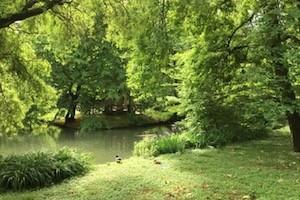 I-giardini-delle-Scienze-Paesaggi-H2O