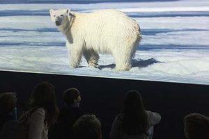 Capire il cambiamento climatico: mostra al Museo di Storia Naturale