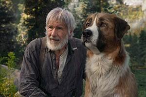 Il richiamo della foresta | dal 20 febbraio al cinema
