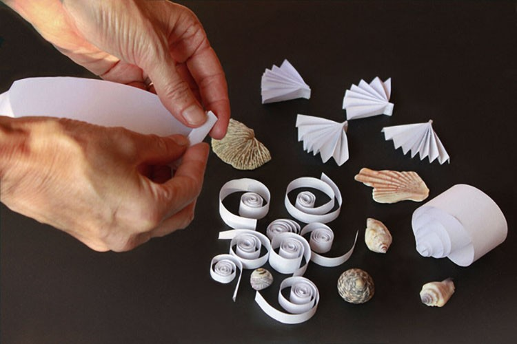 "Laboratorio Metodo Munari ""forme in natura"""