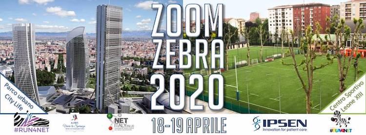 zoom-zebra